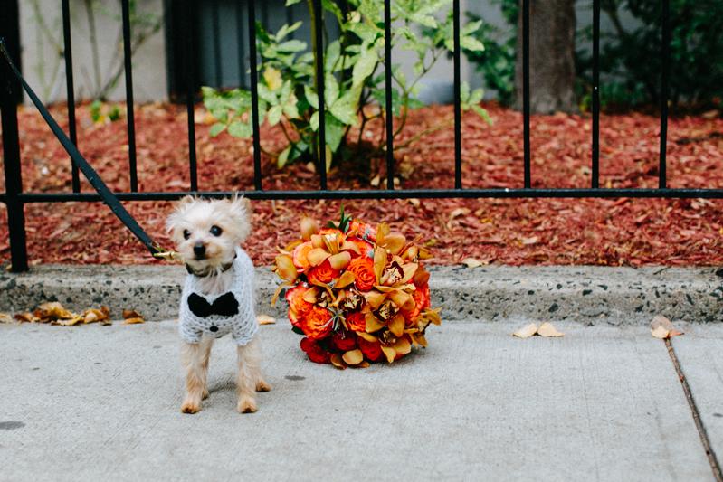 Anthony-Davids-Hoboken-Wedding-photos