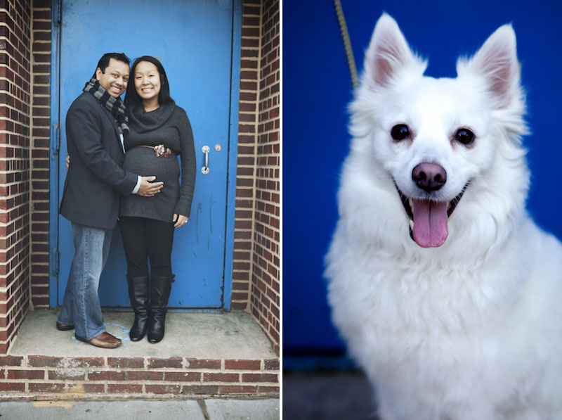 family and pet photography brooklyn