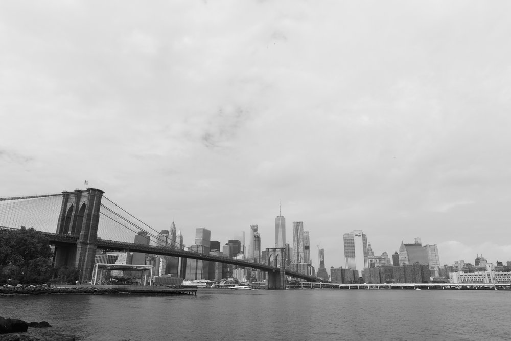 View of the New York City Skyline from Brooklyn Bridge Park