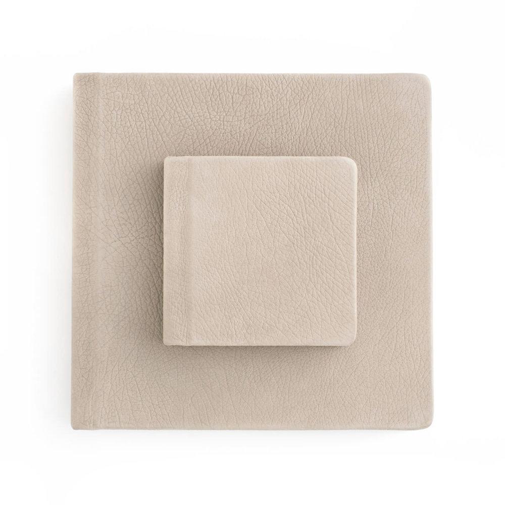 10 x 10 leather album plus parent album.jpg