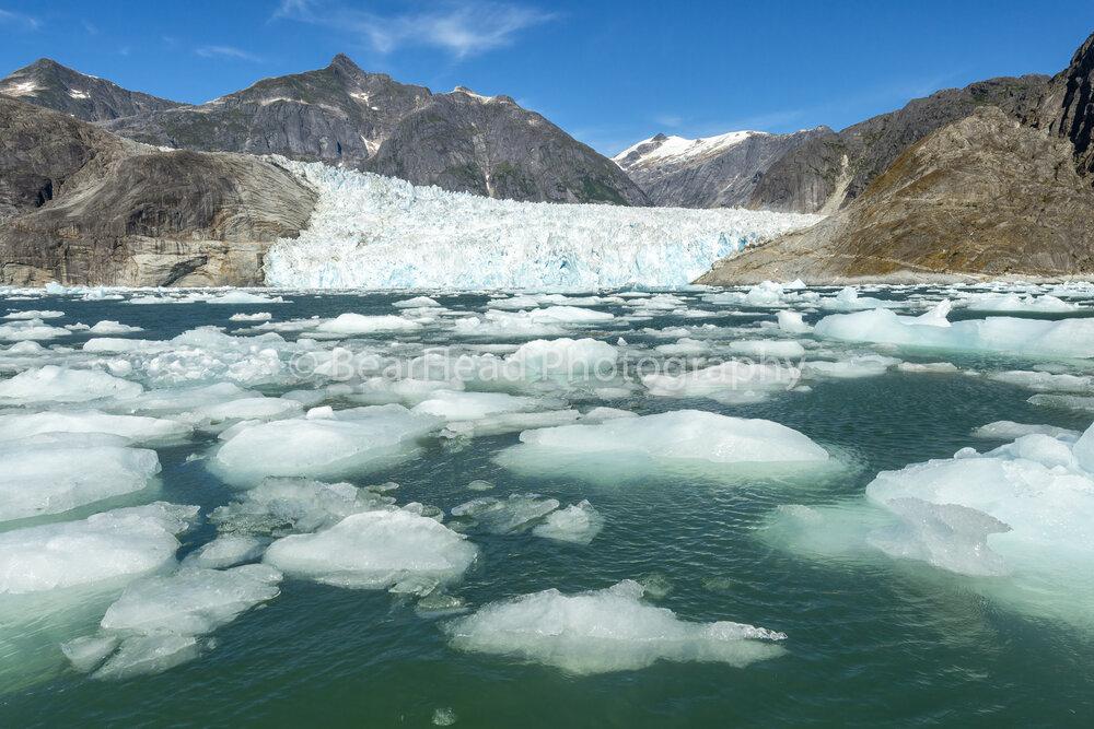 Iceberg Glacier