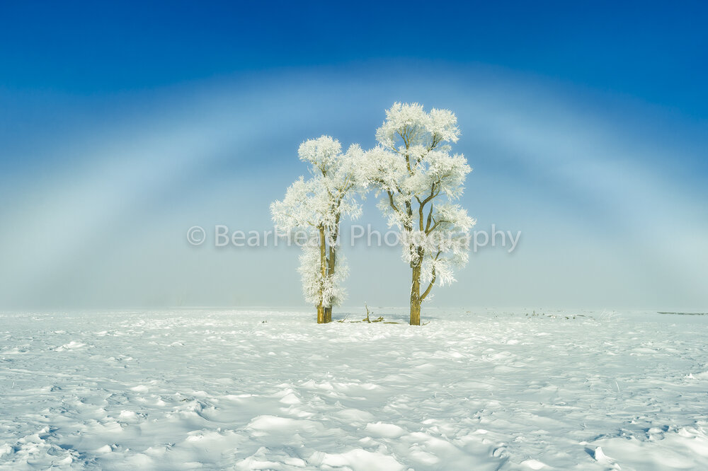Frosty Rainbow
