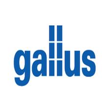Gallus.png