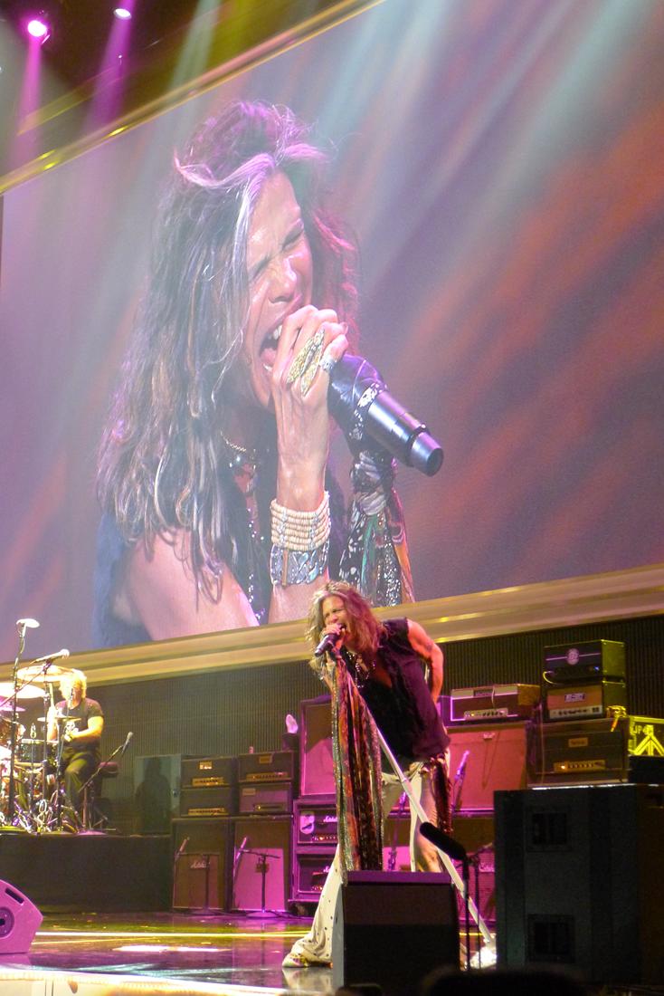 Aerosmith_Steven_Pink_web.png