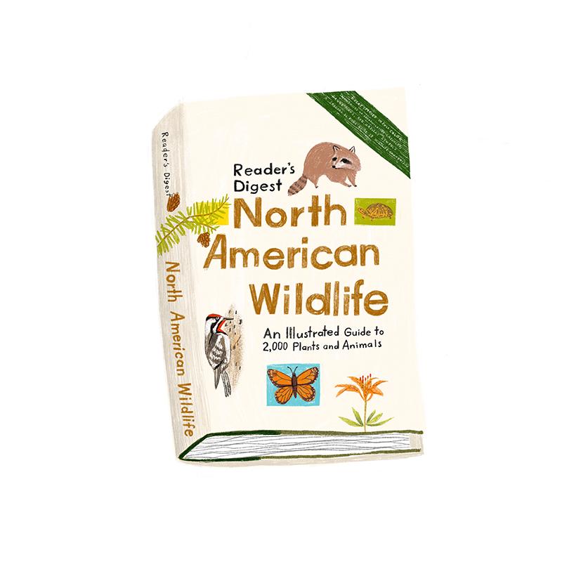 NorthAmericanWildlife.jpg