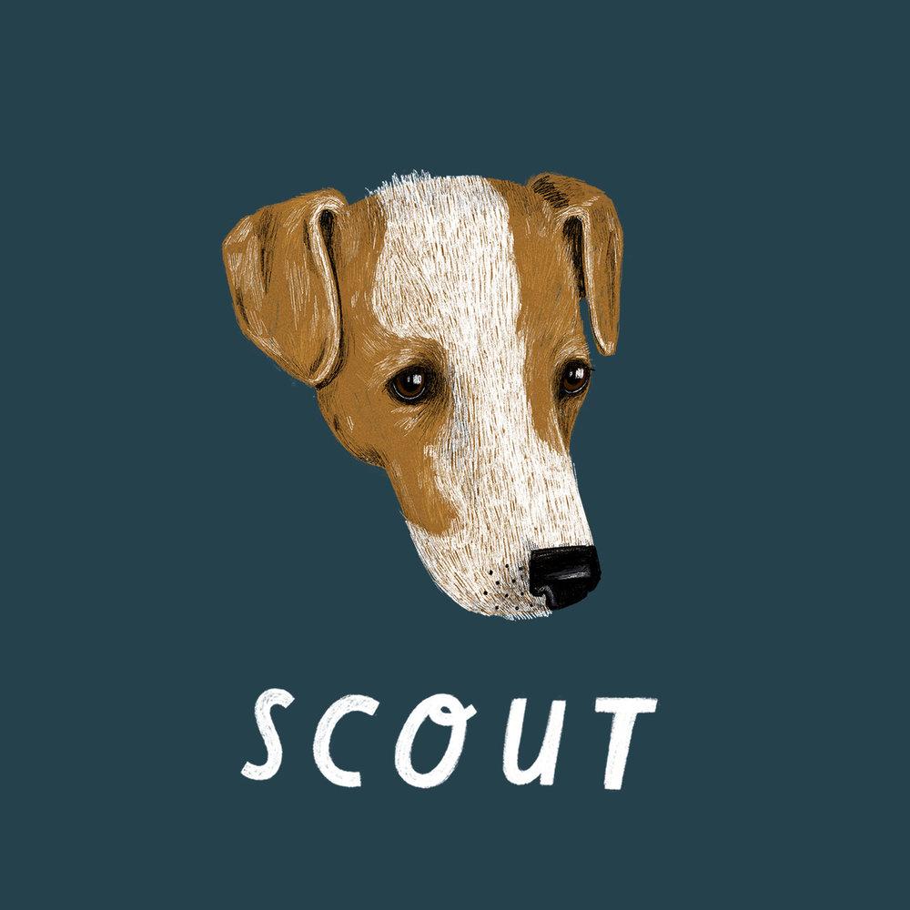 IG_Scout.jpg