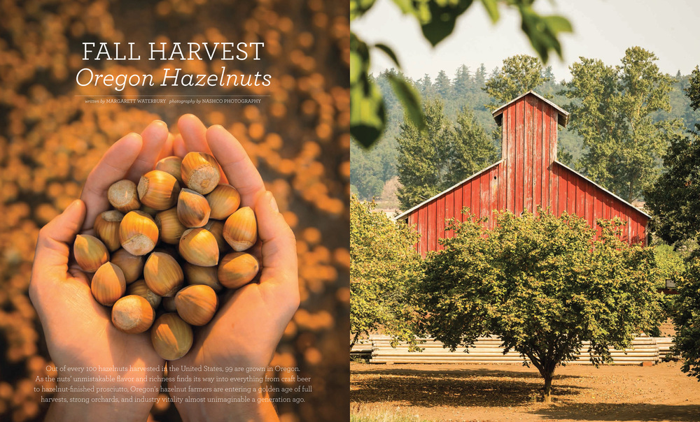 Hazelnut Feature-2.jpg