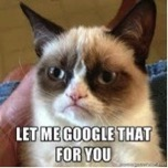 Grumpy Cat speaks word of wisdom.