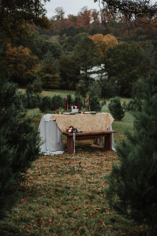 Georgia-Couples-Winter-Engagement-Wedding-5.jpg