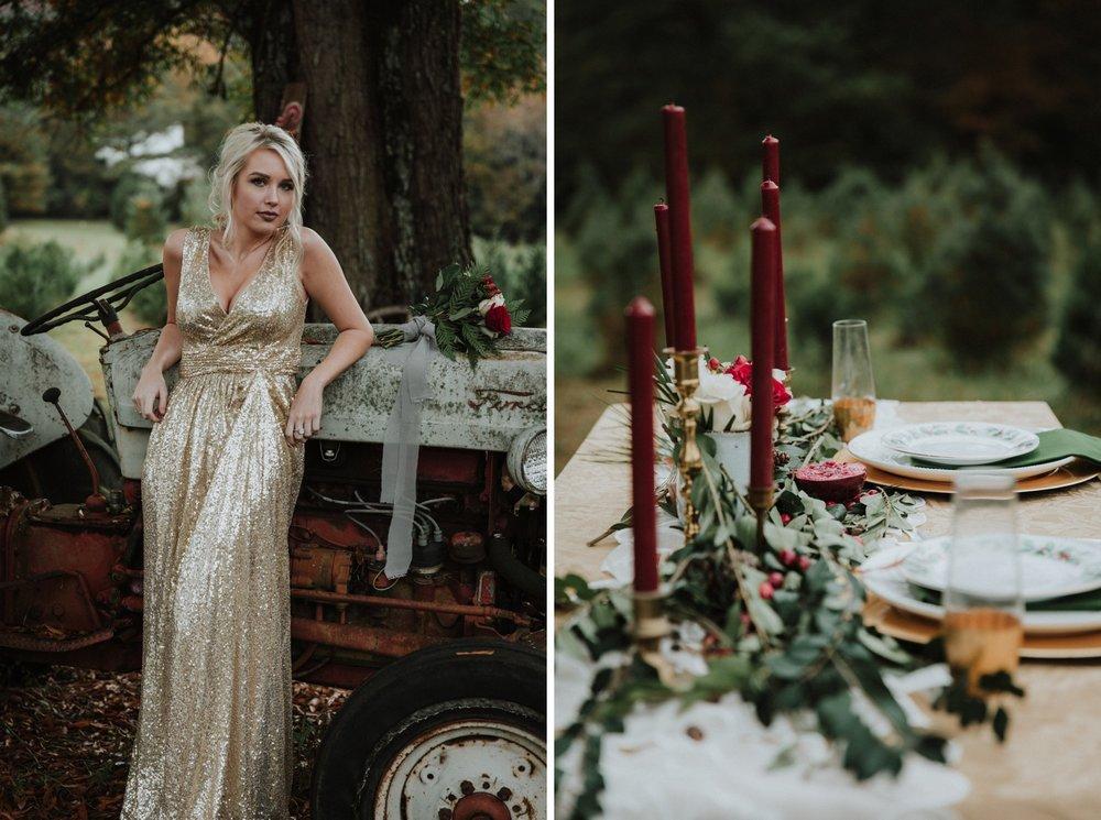 Georgia-Couples-Winter-Engagement-Wedding-22.jpg