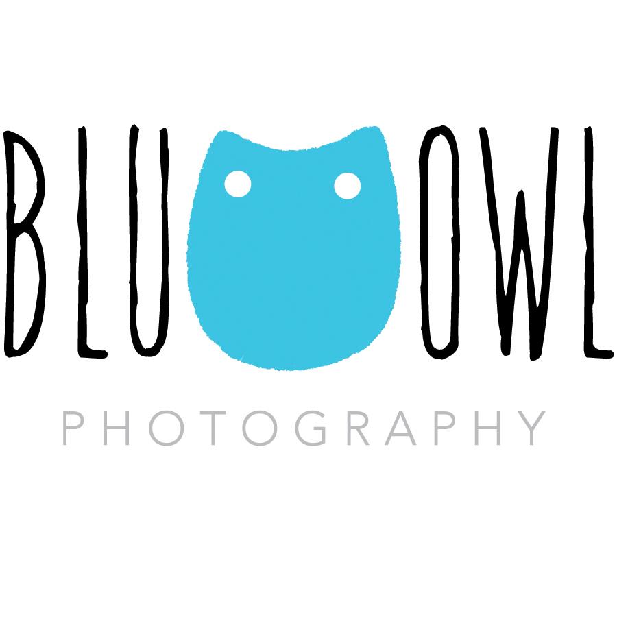 blu_owl-01.jpg