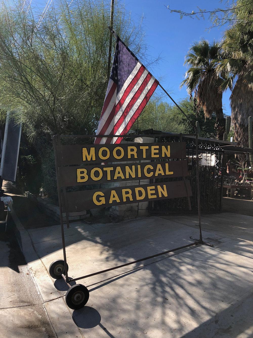 cactus_garden_4.jpg