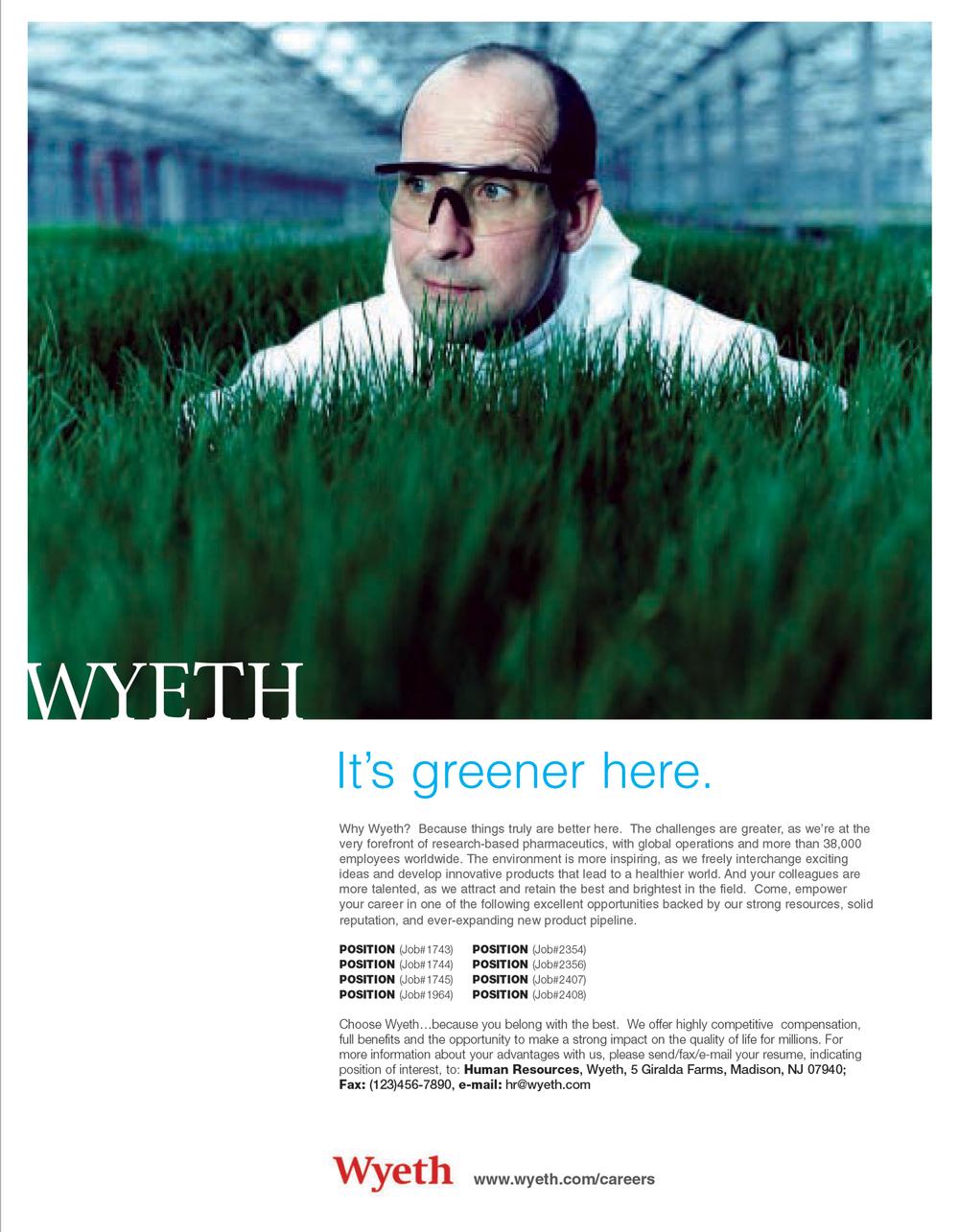 wyeth1_03.jpg
