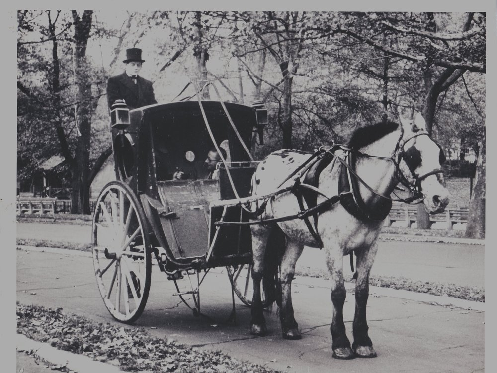 Cornelius David Byrne with carriage horse Geronimo. Central Park, mid 1950s.