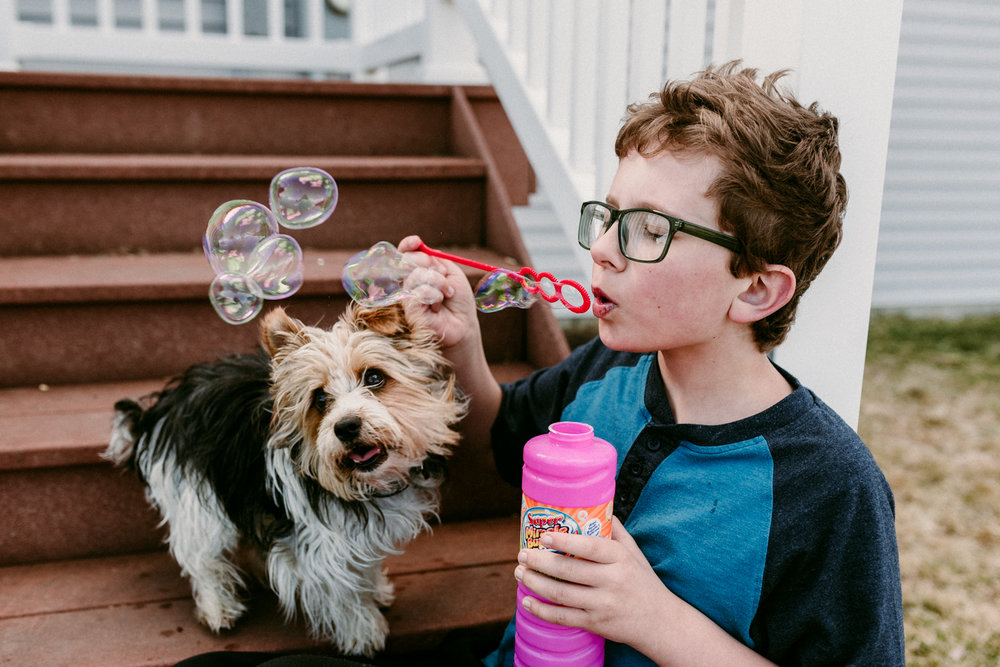 Boy and his dog blowing and chasing bubbles in fargo, ND.