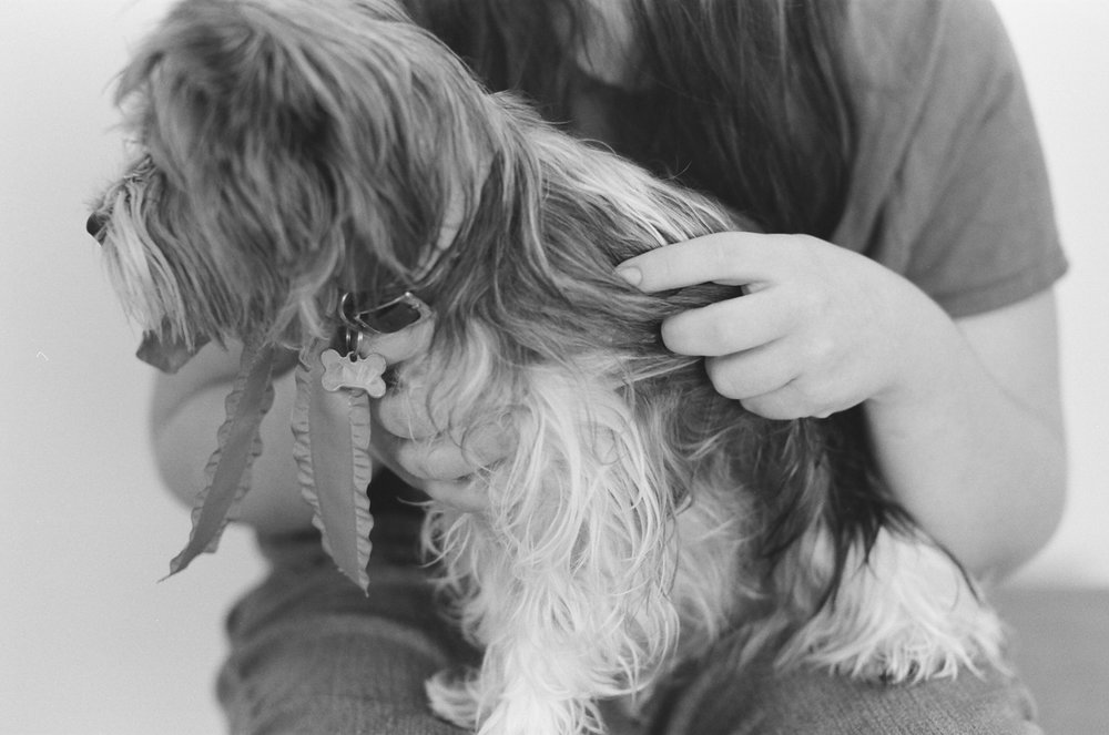 A teenage girl petting her dog's fur during a portrait session in Fargo.