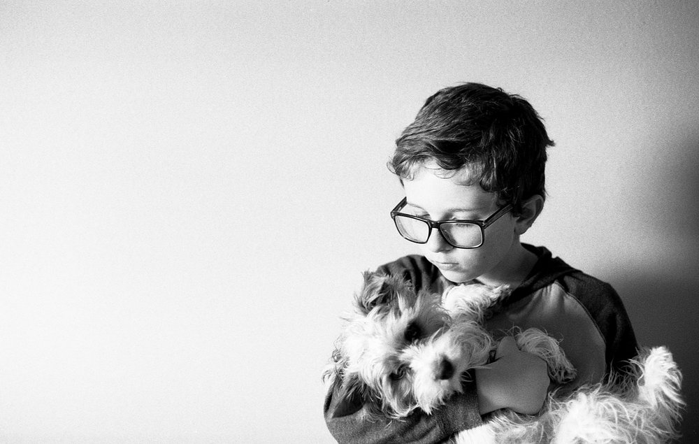 Boy holding his yorkie puppy.