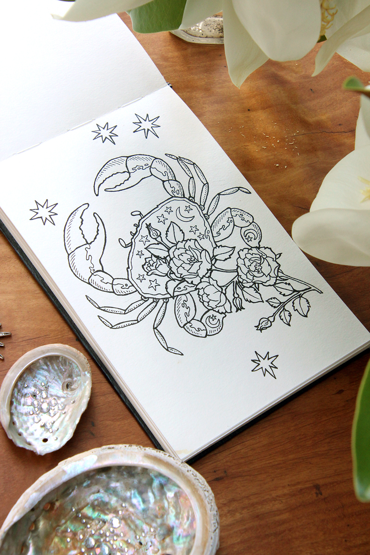 Sketchbook-jan19-3.jpg