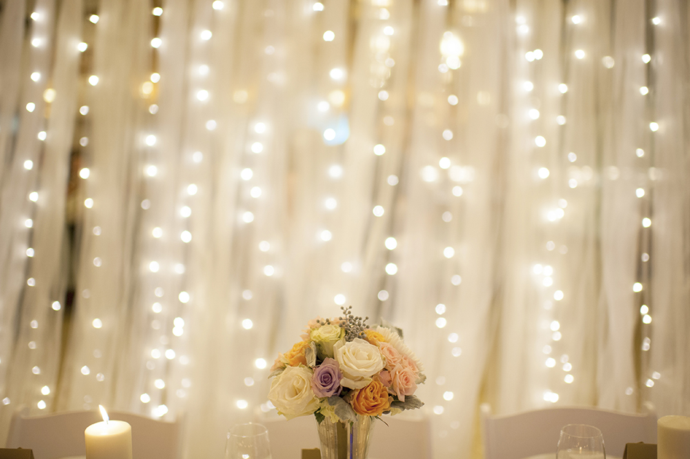 Tulle & Waterfall Fairy Light Divider