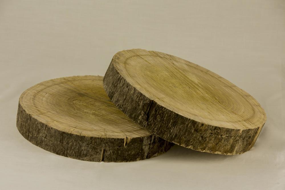 Tree Trunk Timber Logs
