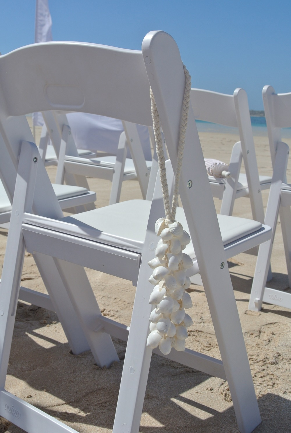 Gladiator Chairs & Shell Chair Hanging