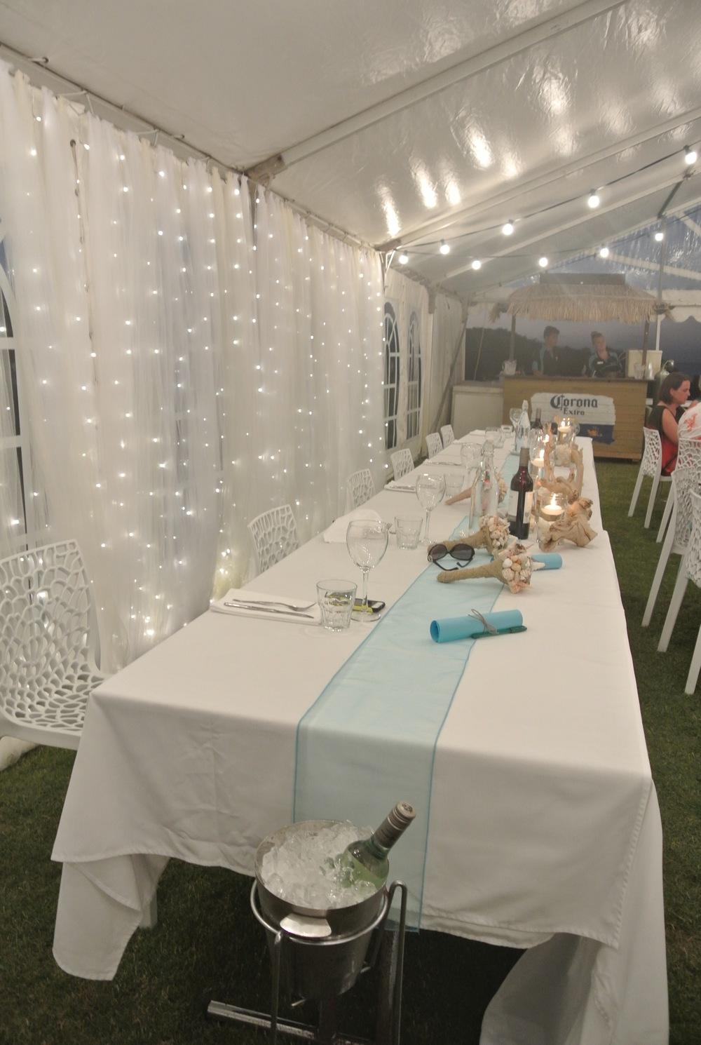 Tulle & Fairy Light Backdrop
