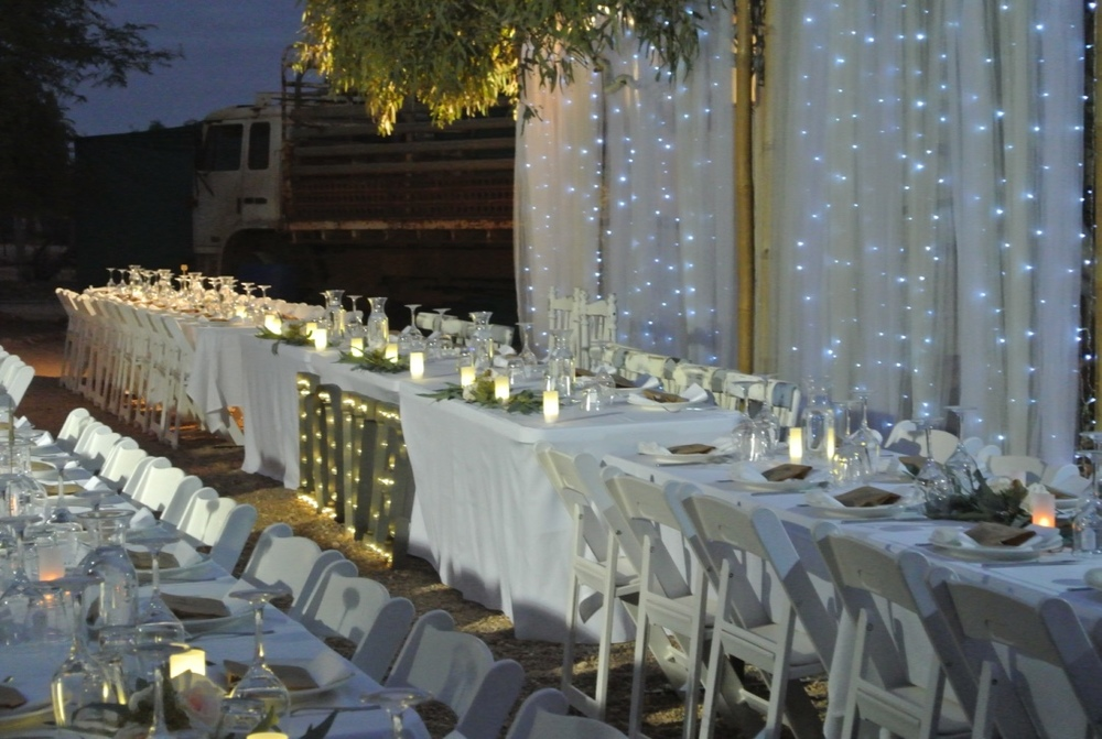 Tulle & Fairy Light Backdrop, Reception Dining