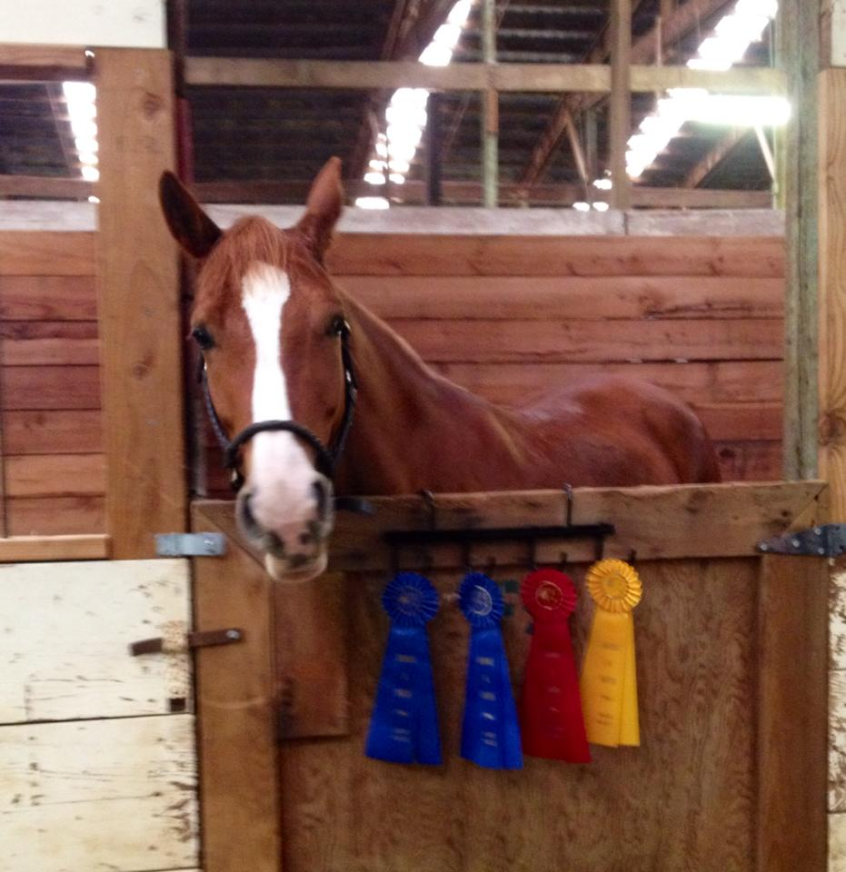 Izzy shows off her ribbons