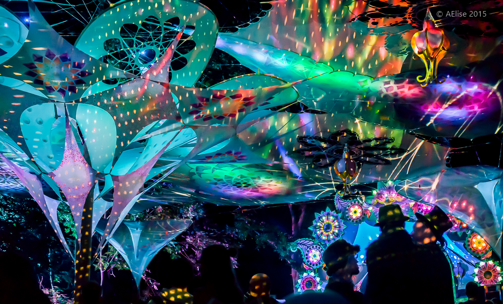 Liquid Faeries Decor at Noisily 2015  https://www.facebook.com/LiquidFaeries