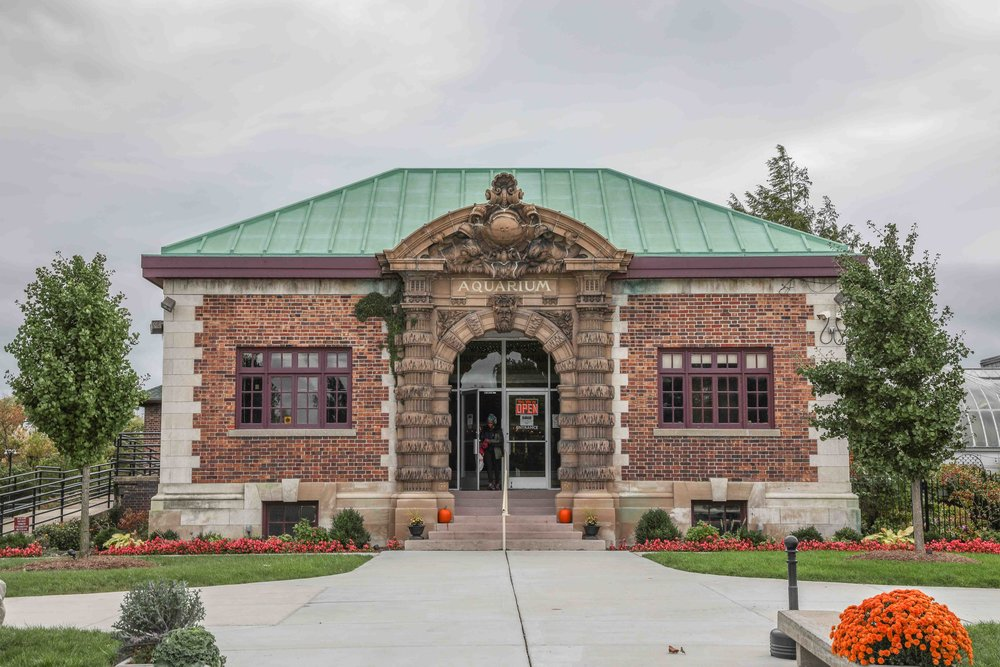 Belle Isle Aquarium is America's oldest aquarium, opening in 1904.