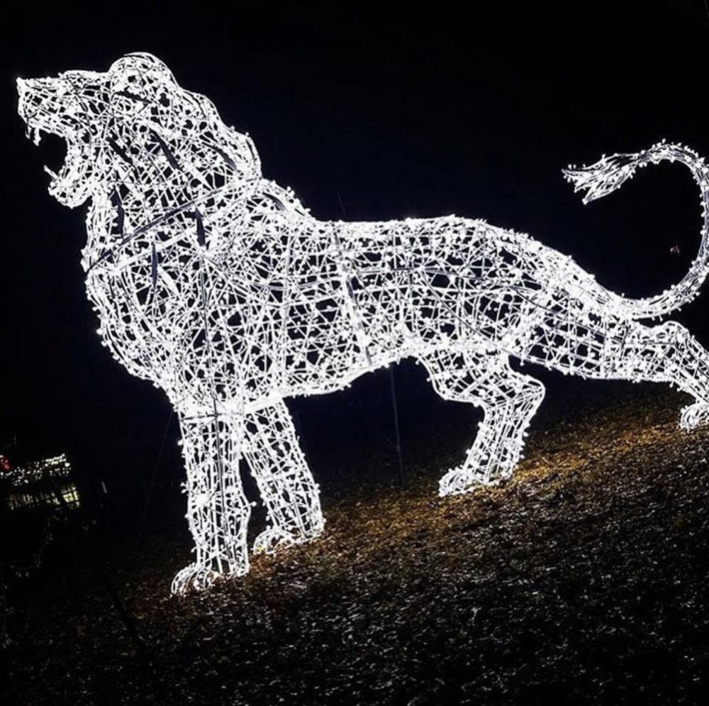 Zoo lights via  @detroitzoo .