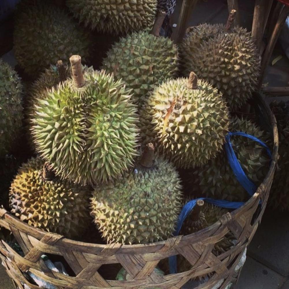 jackfruit via @windsoriandiaries