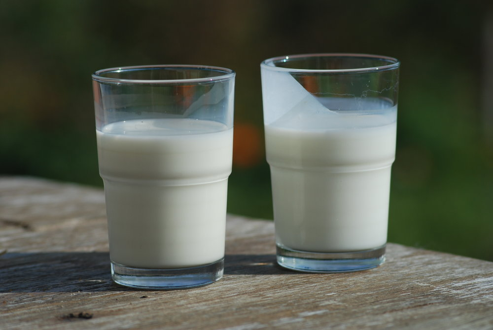 Dairy is a great way to get in your daily dosage of Vitamin D. Photo via  Wikipedia