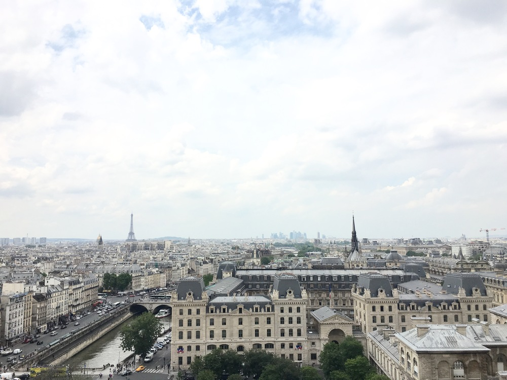 the view from the Towers of Notre Dame