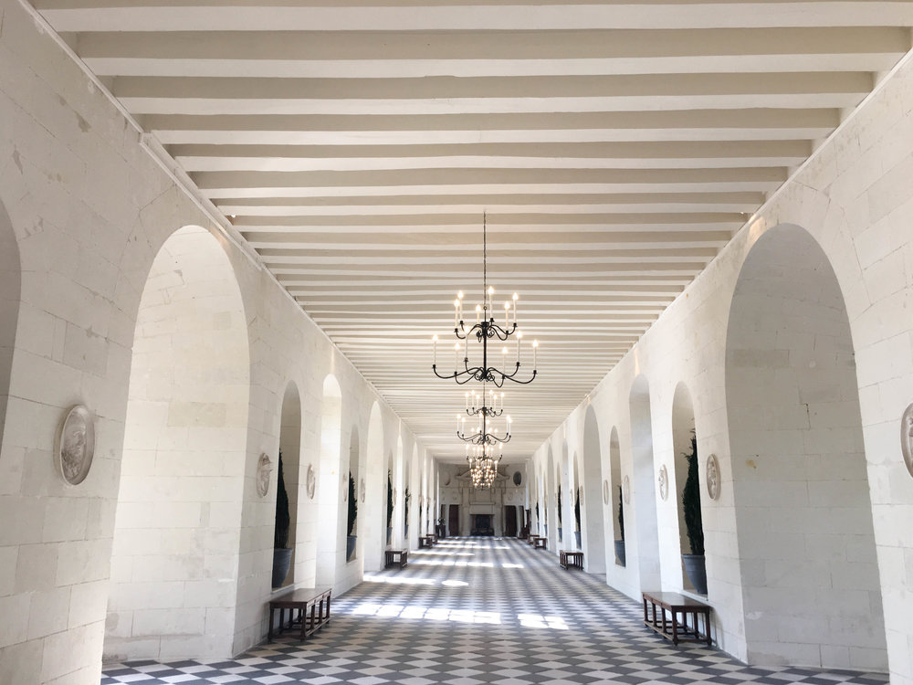 Chenonceau-Grand-Hall-Loire-Valley