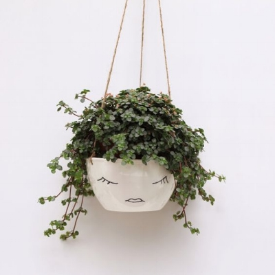 Hanging Succulent Planter on the Weekly Edit