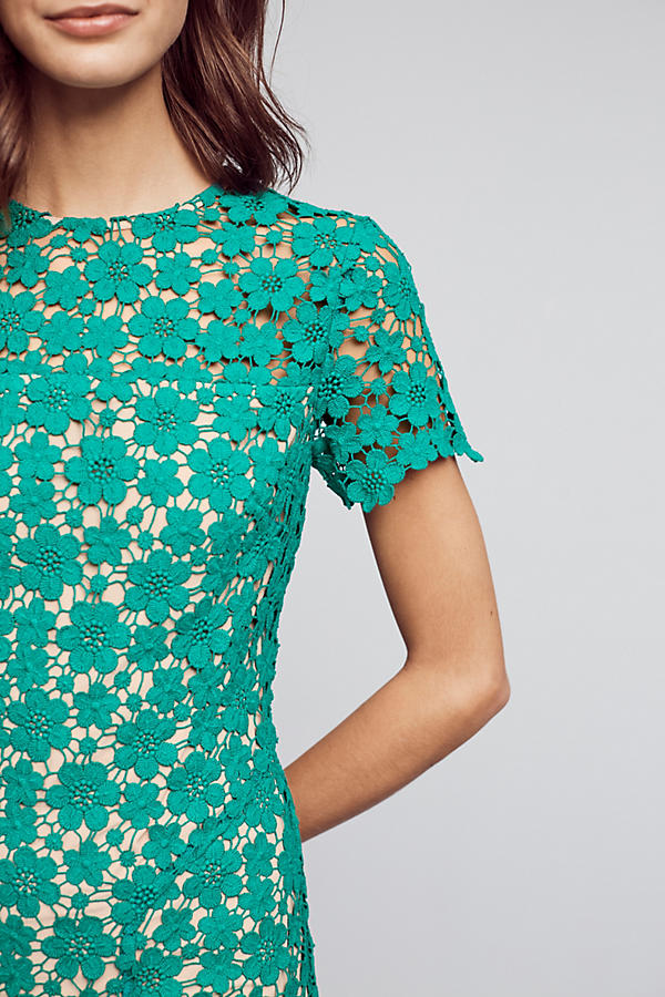 Green Lace Midi Dress on the Weekly Edit