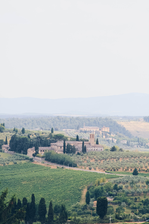 Tuscany (20 of 66).jpg