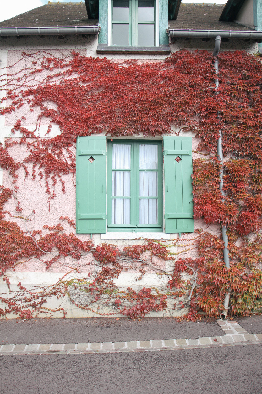 Giverny-22.jpg