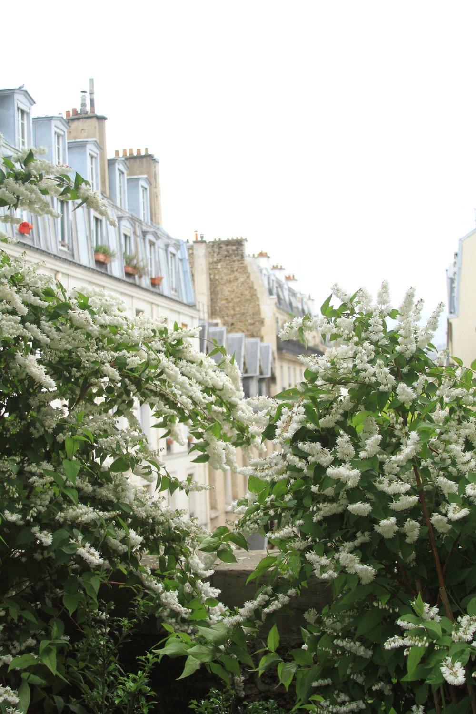 Paris-Favorite-Things-to-Do-MonicaFrancis