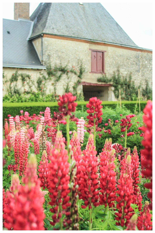 Cheverny-Garden-Loire-Valley