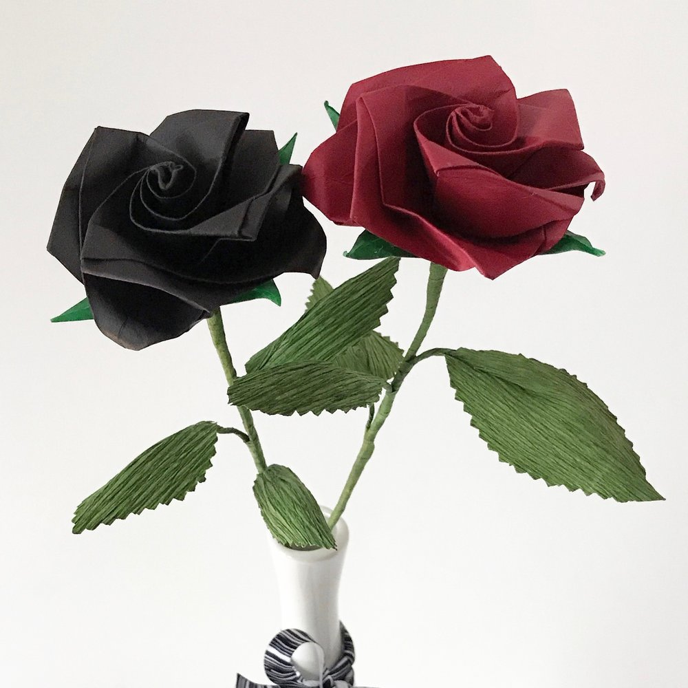 long stem premium roses