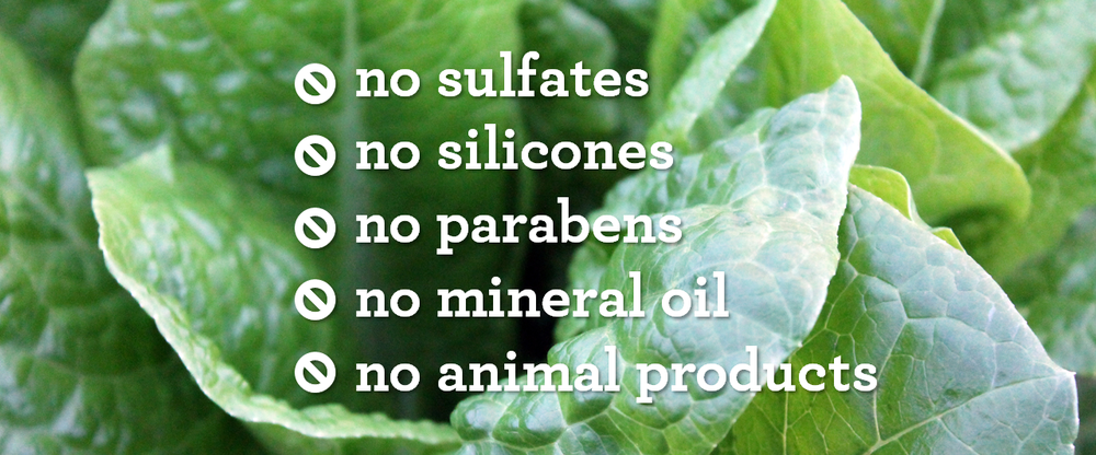 WHY WE USE NATURAL &