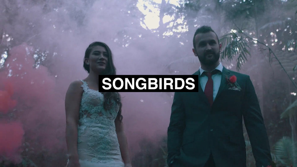 songbirds.jpg