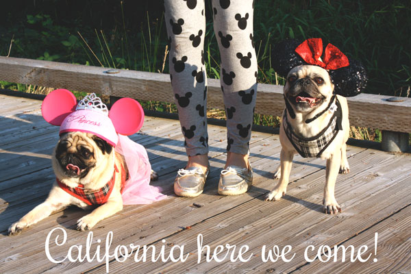 California Here We Come! — Enchanted Type