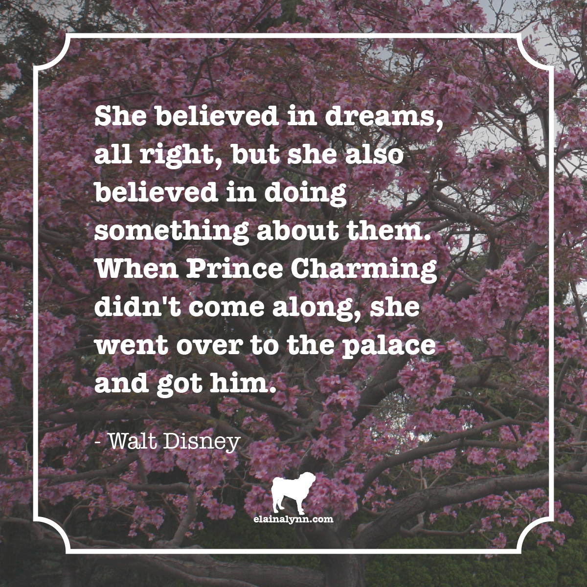 Quote Cinderella Dreams