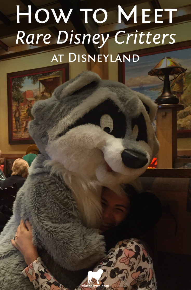How to Meet Rare Disney Critters at Disneyland