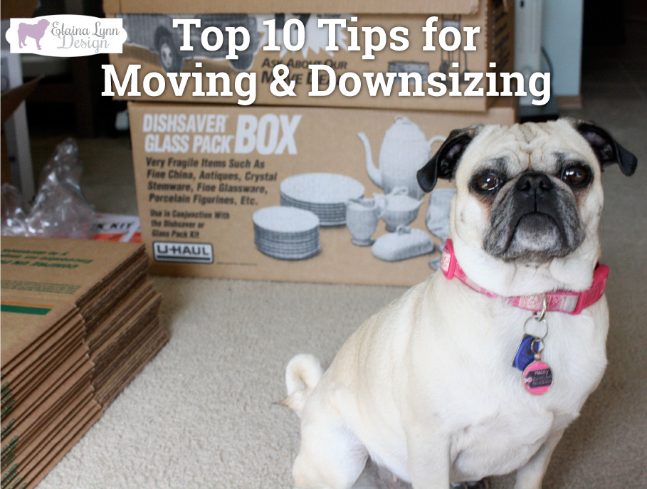Pug Moving Tricks