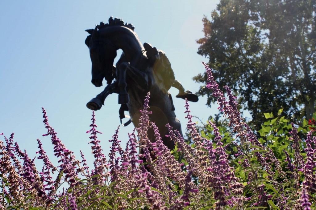 Austin Cowboy statue