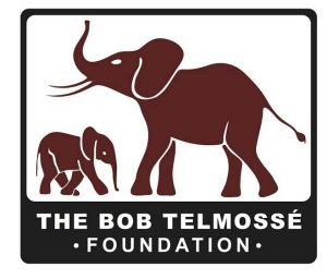 Bob Telmosse Foundation